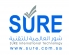 Web Designer - KSA at SURE International Technology