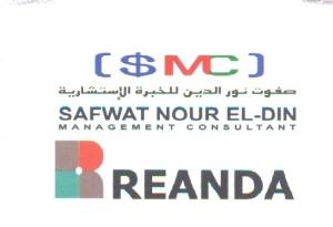 Safwat Nour Eldin Management Consultant Logo