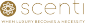 Corporate Sales Executive at Scenti