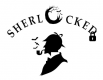 Jobs and Careers at Sherlocked Egypt Egypt