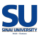 Junior Web Developer at Sinai University