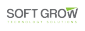 Senior Web Designer at Soft Grow for Information Technologies