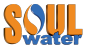 Chief Internal Auditor at Soul Water Filter