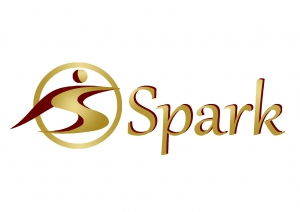 Spark for Software Solutions Logo