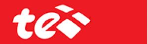 TE Data Logo