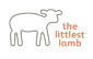 Math & Science Teacher at The Littlest Lamb