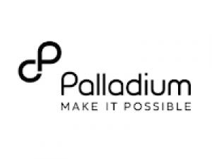 The Palladium Group Logo