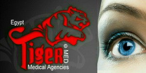 Tiger Med For Medical Agencies Logo