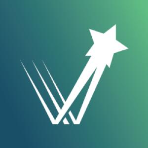 Town V Life Logo