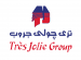 Treasury Accountant at Tres-Jolie-Group-Egypt