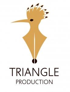 Triangle Media Production Logo