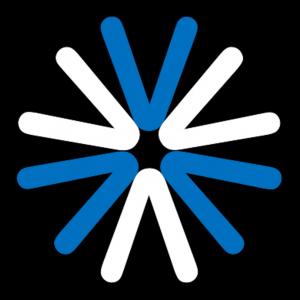 Vetwork Logo