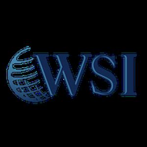WSI Logo
