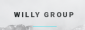 Financial Manager at Willy Group