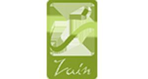 Zainegypt Logo