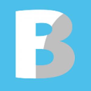 Blue Flower Group Logo