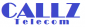 International Telesales Advisor at callz