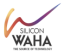 Network Solutions Architect at Silicon Waha