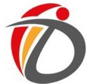 dimexegypt Logo