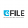 .NET Developer at e-file