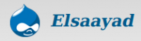 Jobs and Careers at elsaayad Egypt