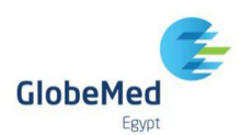 Jobs and Careers at GlobeMed Egypt