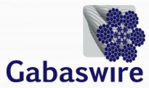 Gabas Wire Logo