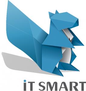 iT SMART Logo