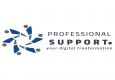 Jobs and Careers at professional support Egypt