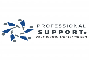 professional support Logo