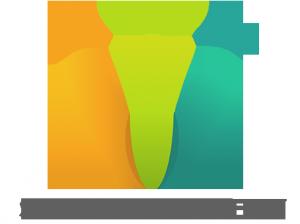 success training academy  Logo