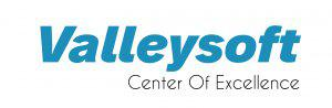 Valleysoft Logo