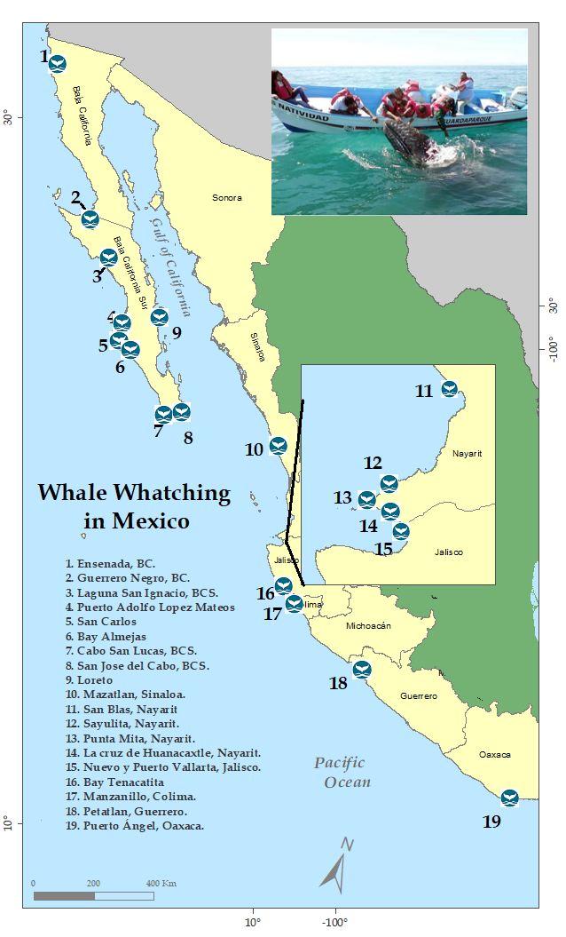Gulf Of California Map.Mexico Whale Watching Handbook