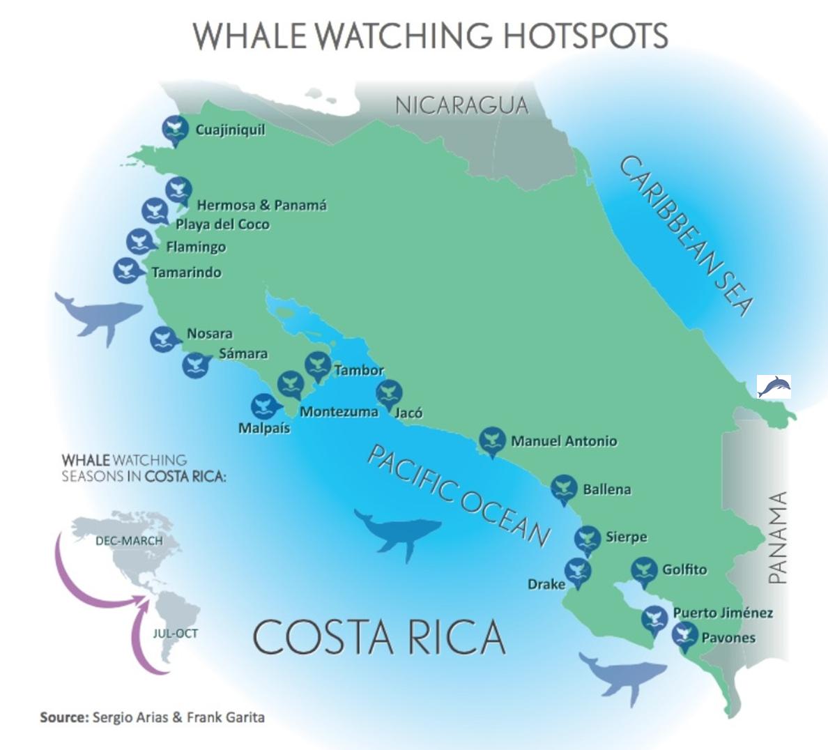 Image of: Costa Rica Whale Watching Handbook