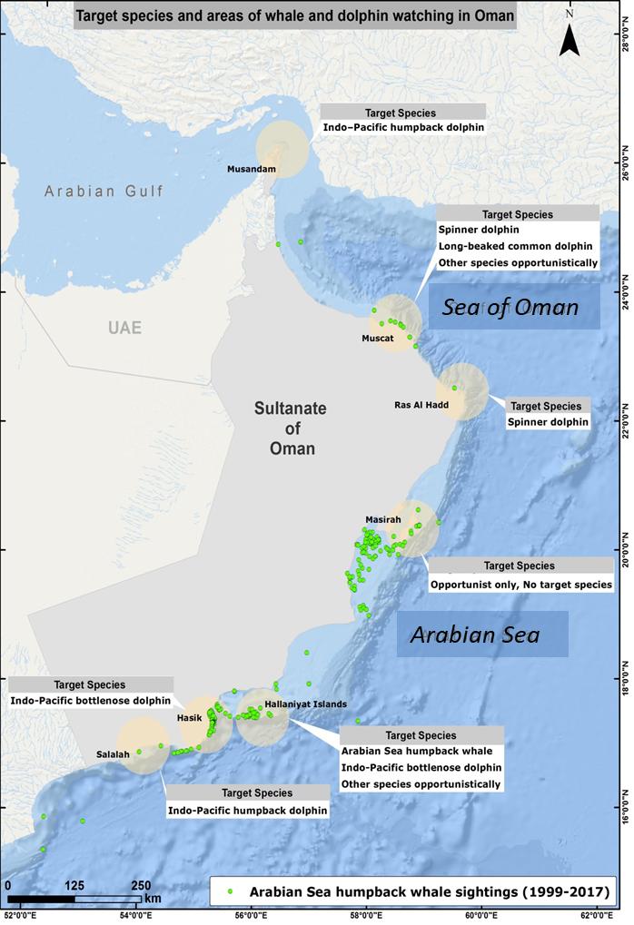 Sultanate of Oman | Whale Watching Handbook