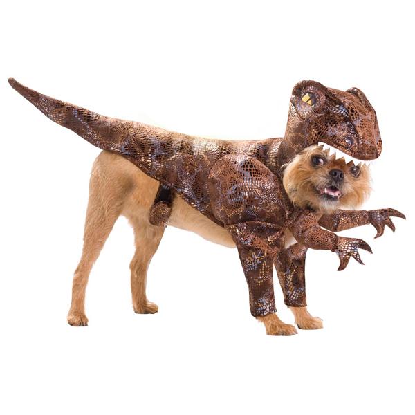 Pet Costumes Halloween