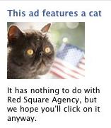 Cous Cous Cat Advert