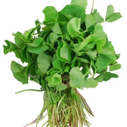 Brahmi Leaves 250g