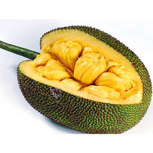 Jack Fruit 250g