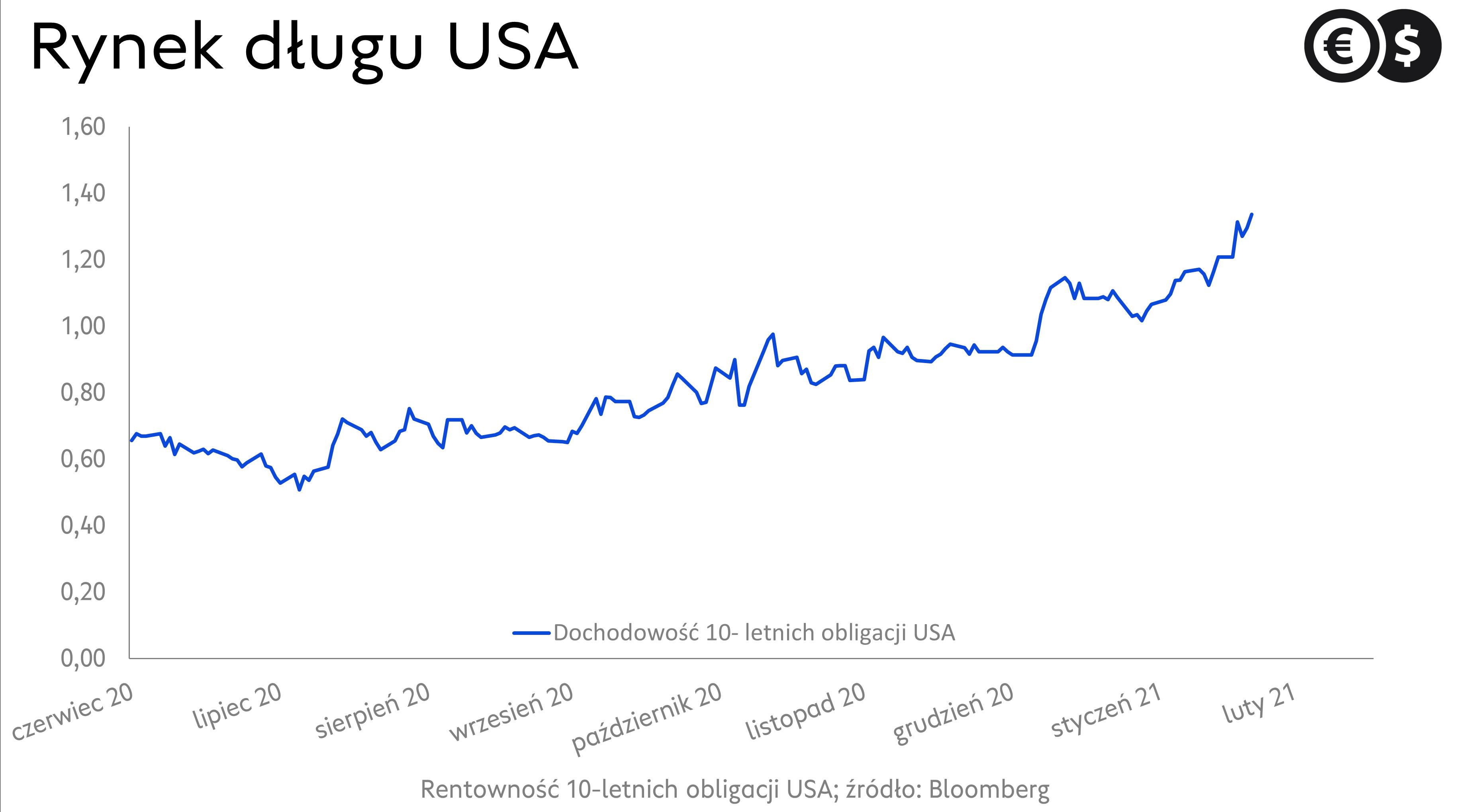Rynek długu w USA