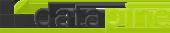 Datapine logo