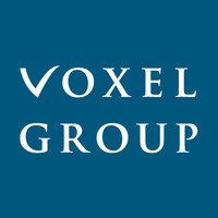 Voxel Group logo