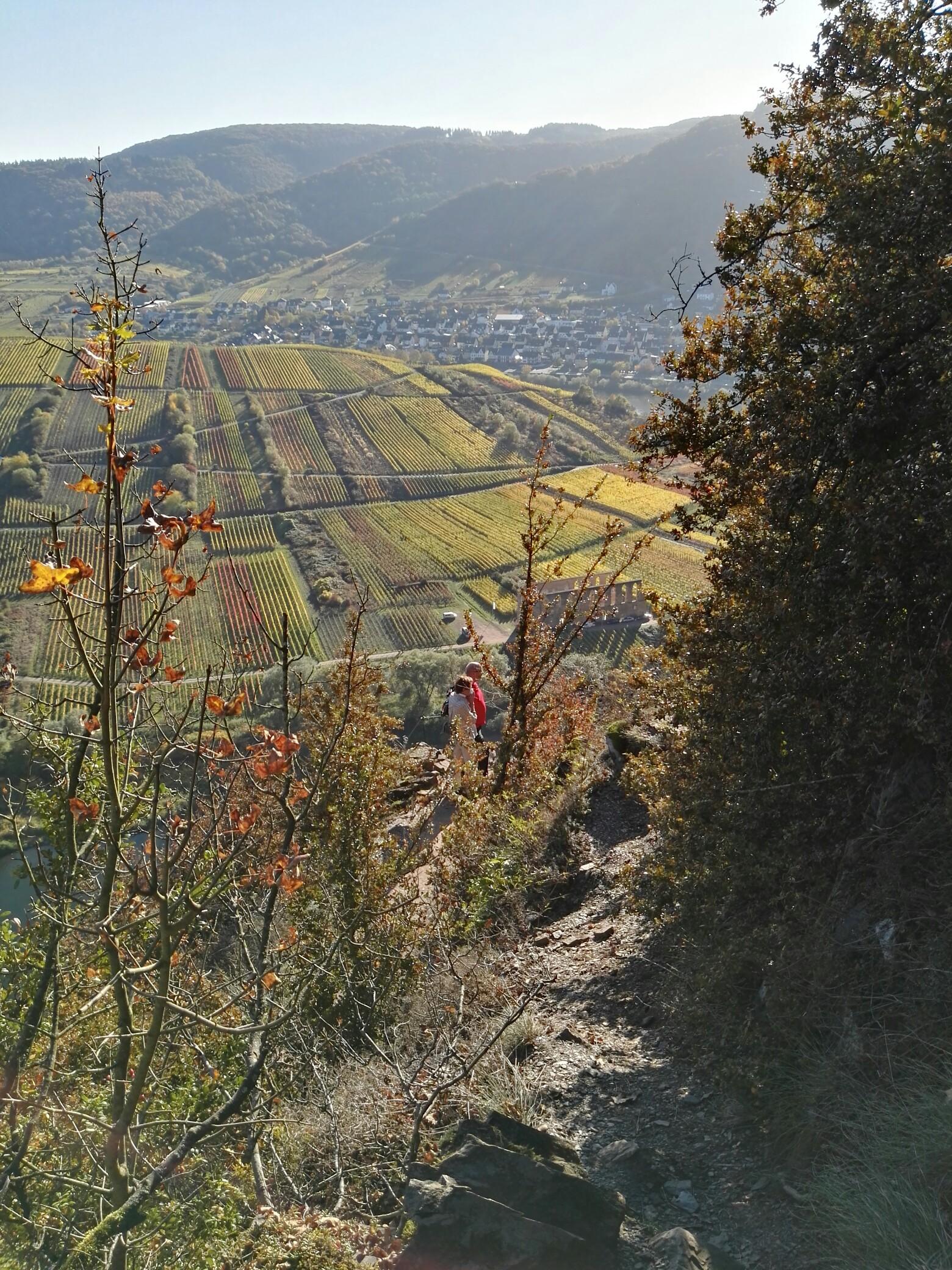 Klettersteig Cochem : Calmont klettersteig und höhenweg km auf augenhöhe mit dem
