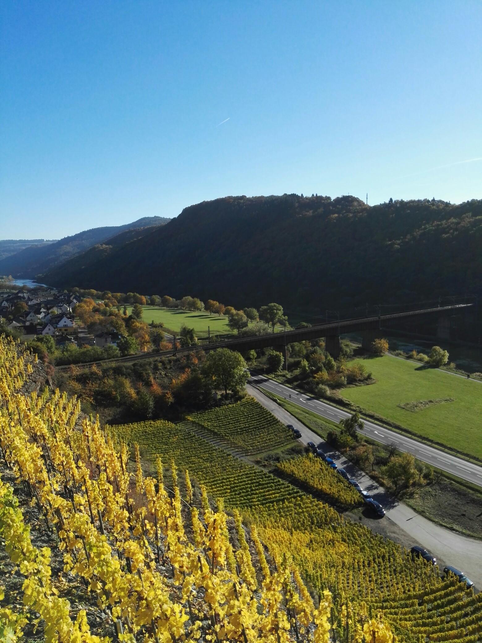 Klettersteig Cochem : Calmont klettersteig die moselsteig etappe mit nervenkitzel