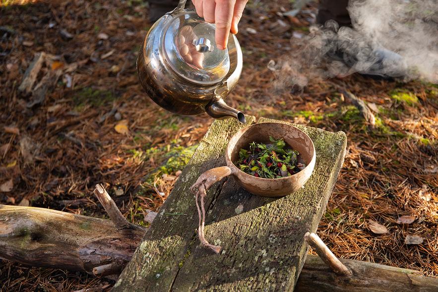 Ein Topf mit Wasser wird über einige essbare Pflanzen auf einer Bank im Wald gegossen