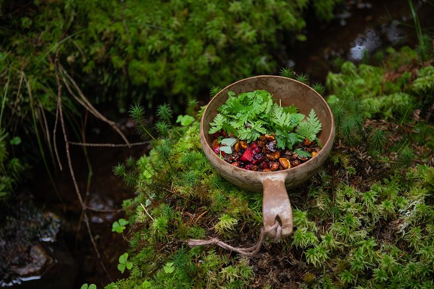 Nüsse, Beeren und Kräuter in einer Holzschale oder kåsa im Wald