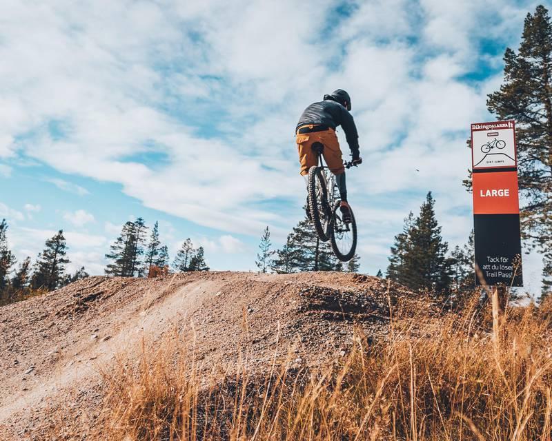 Mountain biking in Idre, Dalarna