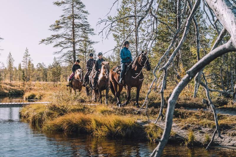Horse back riding in Idre, Dalarna