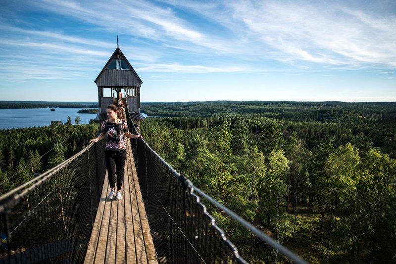 Zipline, Småland