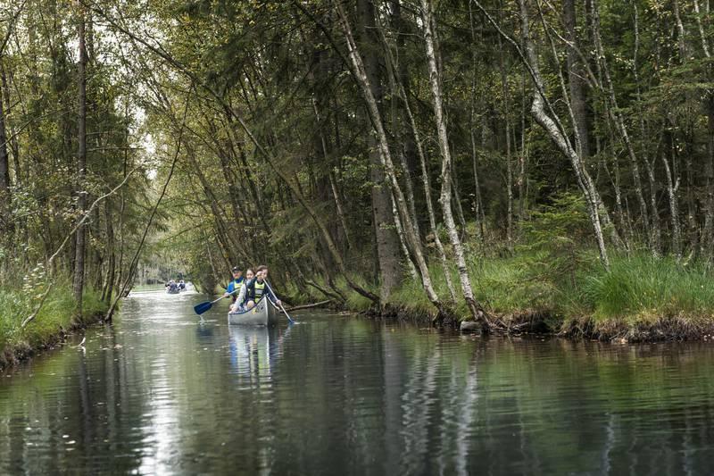 Canoeing at Vättlefjäll nature reserve